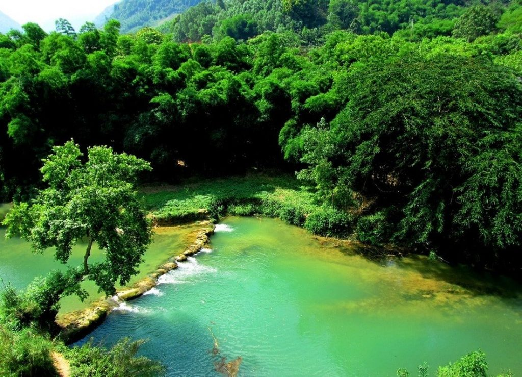The Bưởi (Pomelo) River - great for a swim!