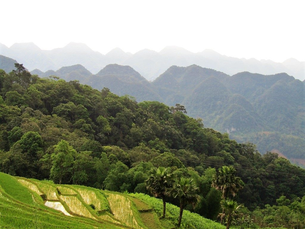 View from a homestay, Pu Luong Nature Reserve, Thanh Hoa Province, Vietnam