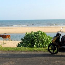 Empty: Hồ Cóc Beach as it is today - before the advent of mass tourism
