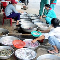'Labourer's Lunch' at Hồ Tràm fishing hamlet