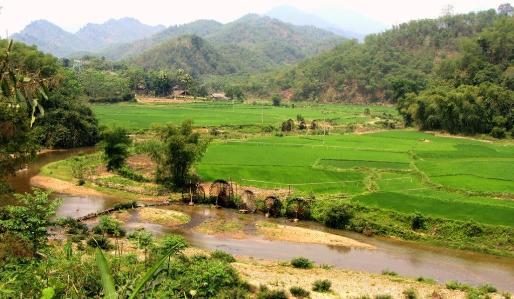 Rural Vietnam: where the ingredients come from