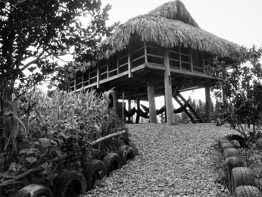 Wood and thatch homestay house, Pu Luong Nature Reserve, Vietnam