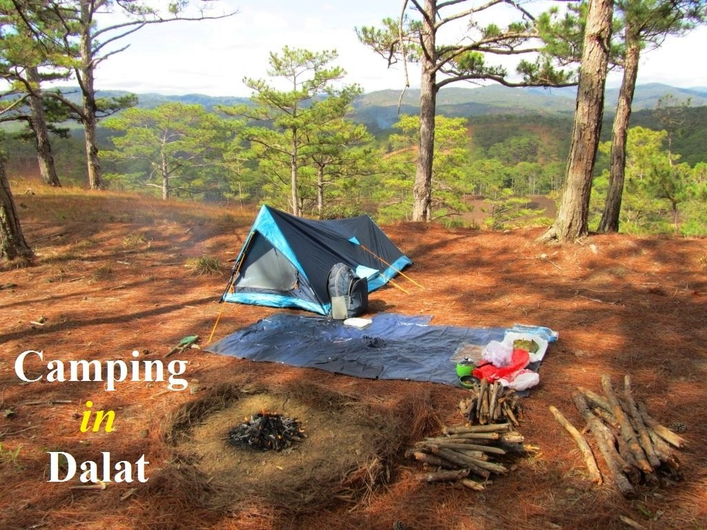 Camping in the pine forests, Dalat, Central Highlands, Vietnam