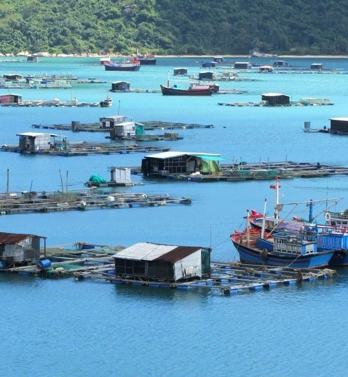 Fishing boats & fish farms in Vũng Rô Bay