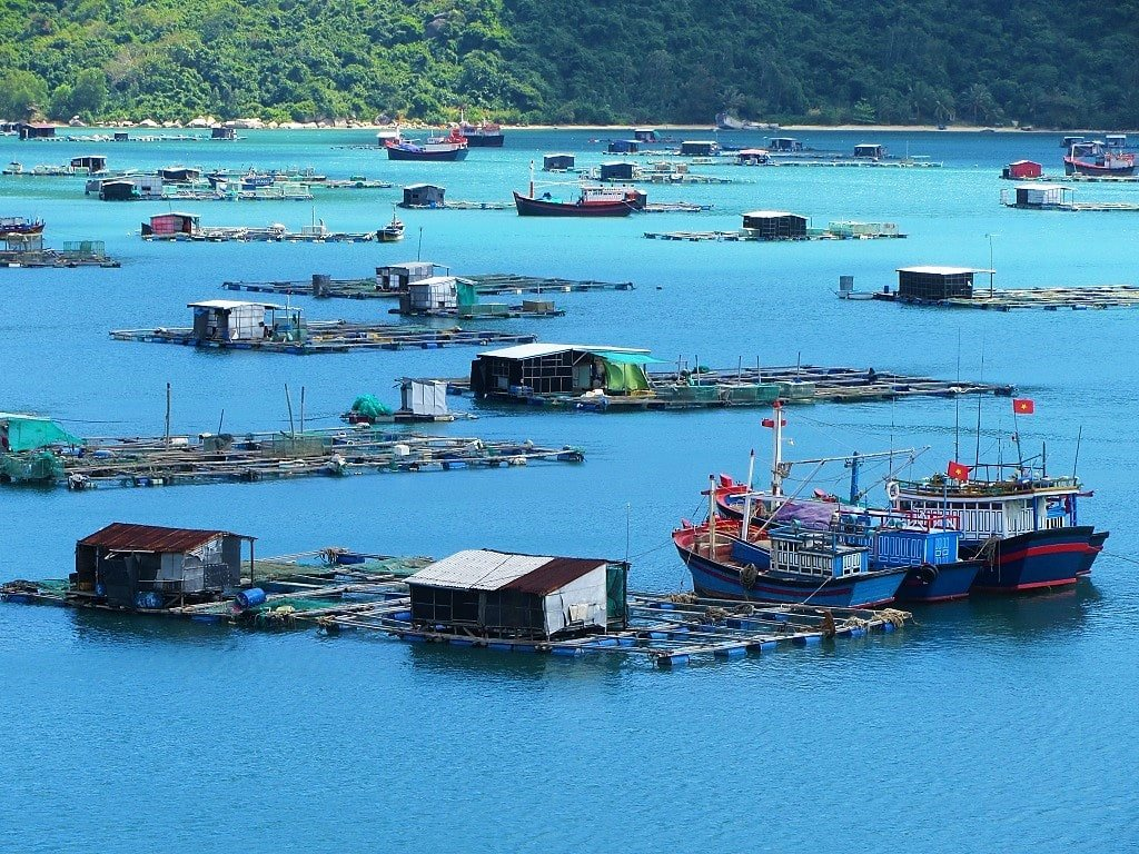 Floating fish farms, Vung Ro Bay, Vietnam