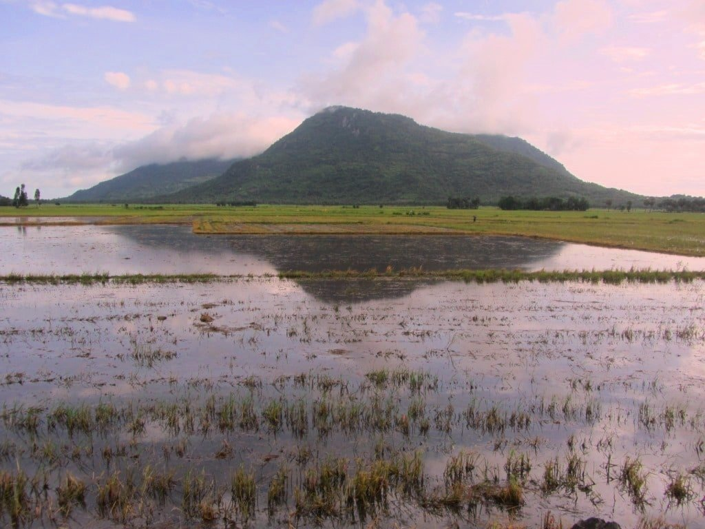 Mountain & flooded rice field, Mekong Delta, Vietnam