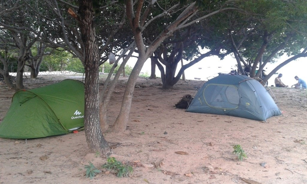 Camping by the beach under fruit trees