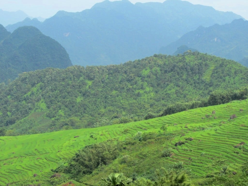 Valleys & fields, Pù Luông Nature Reserve