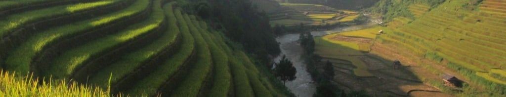 Harvest Route: Mu Cang Chai