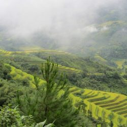 Borders & back-roads: Sapa to Ha Giang
