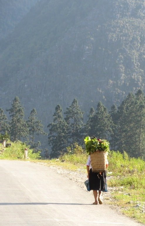 Woman carrying crops on her back, Meo Vac