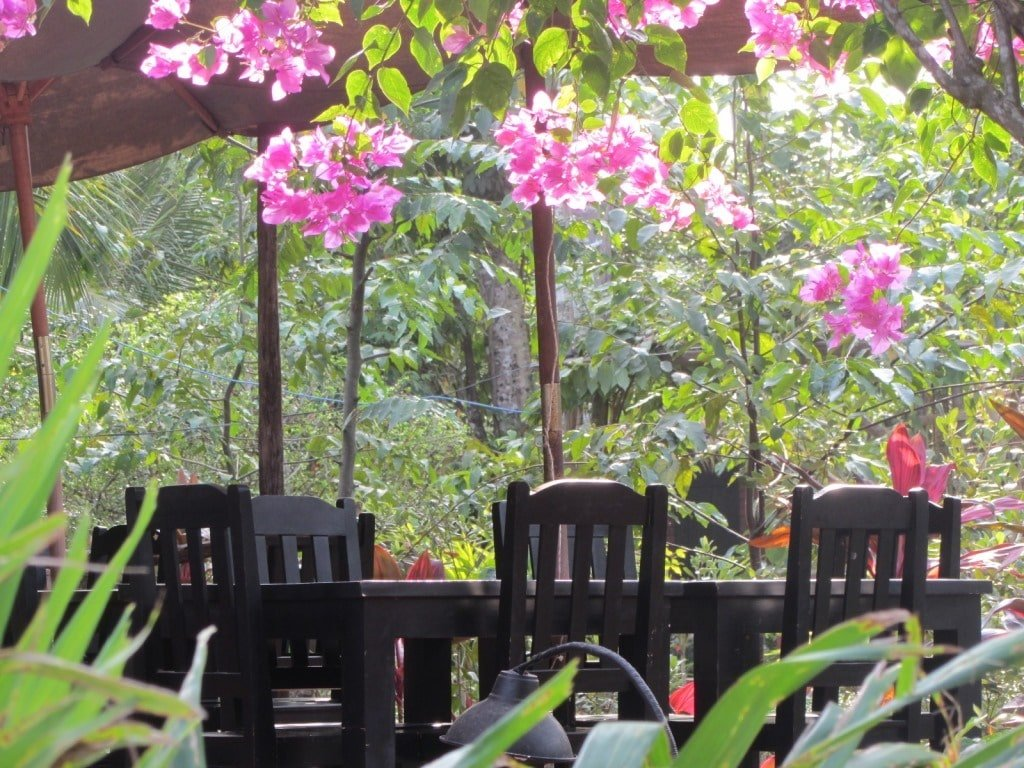 Breakfast patio, Thanh Kieu Resort
