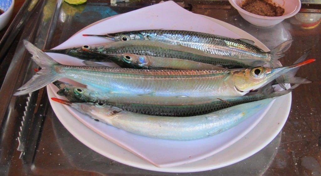 Fresh fish, Phu Quoc