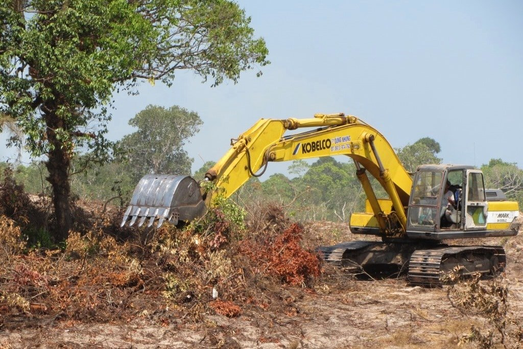 Land clearance on Phu Quoc