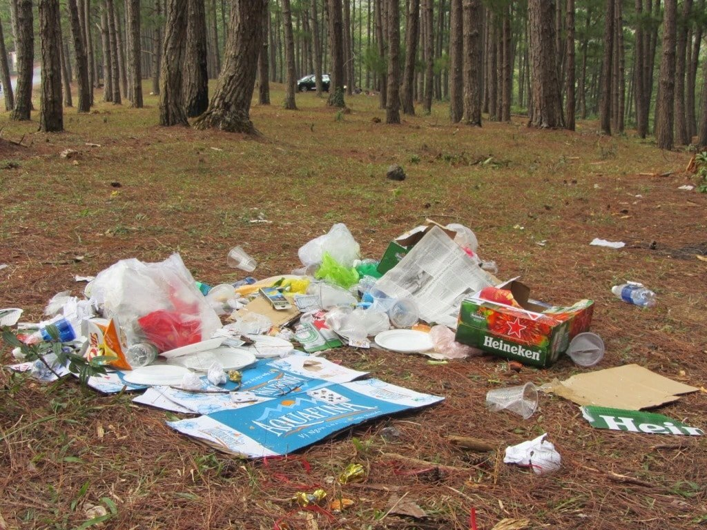 Trash left by picnickers in the pine forests of Dalat, Vietnam