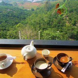 Photo & Bike Cafe, Bao Loc, Central Highlands, Vietnam