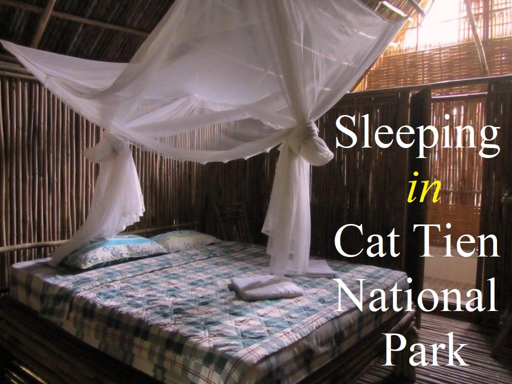 Accommodation in Cat Tien National Park, Vietnam