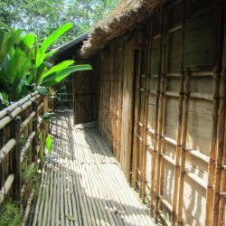 Cat Tien National Park: Where to Stay