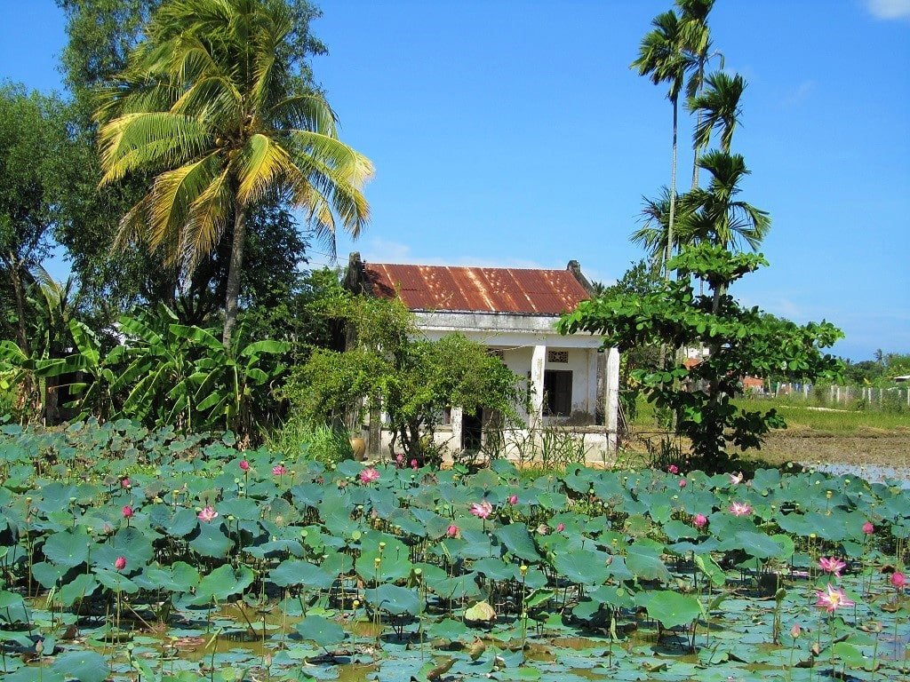 A house in a lush garden on the Ocean Road, Vietnam