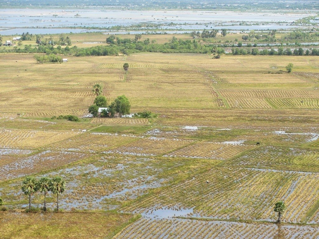 View of rice fields from Da Dung Mountain, Ha Tien, Mekong Delta