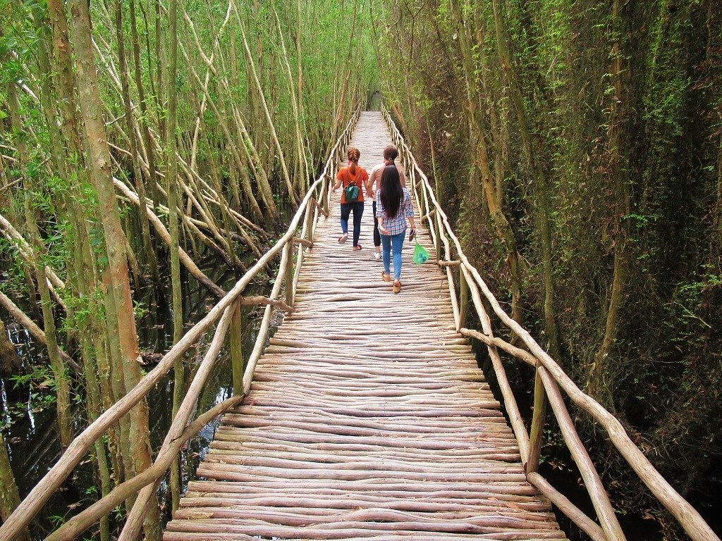 Tan Lap Floating Forest, Long An, Vietnam