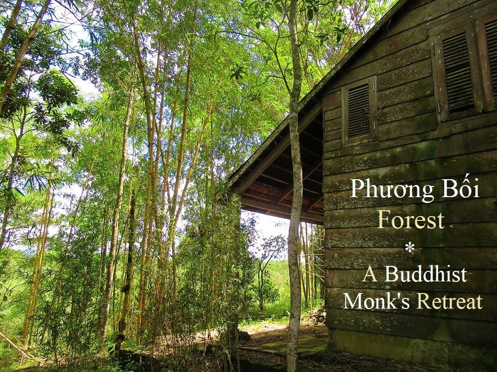 Phuong Boi hill & forest, the Buddhist monk Thich Nhat Hanh's retreat, Vietnam