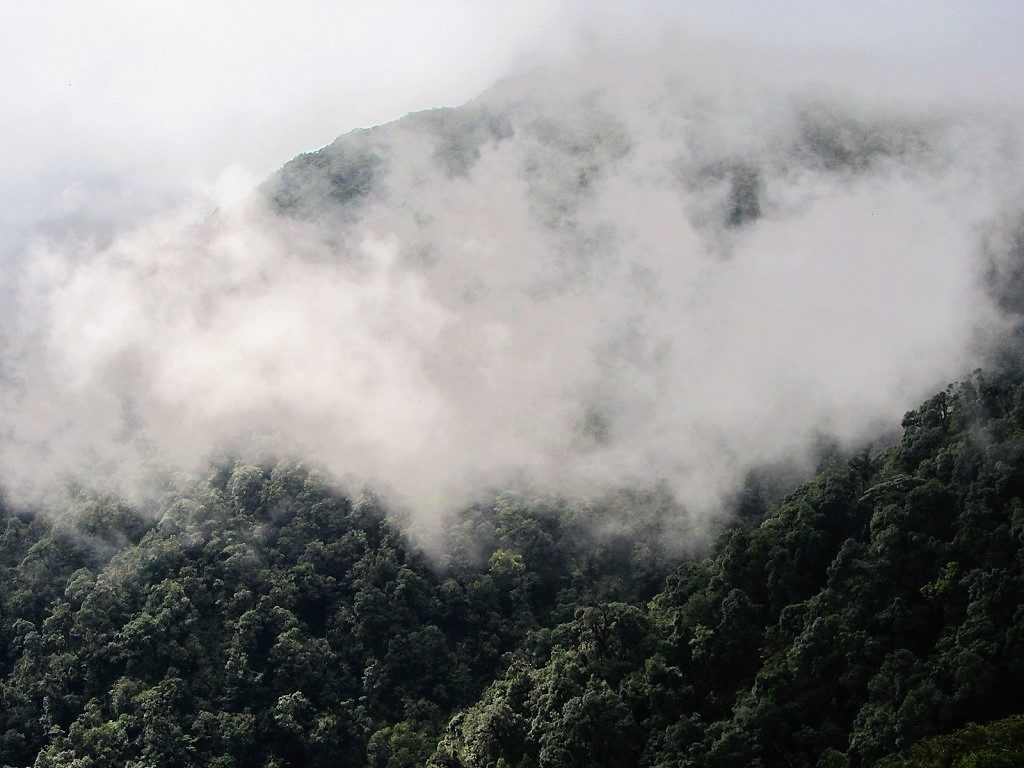 Misty, cloudy weather over Fansipan mountain, Vietnam