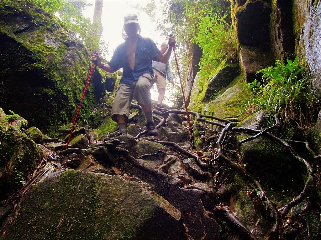 Climbing Fansipan mountain independently, without a guide, Vietnam