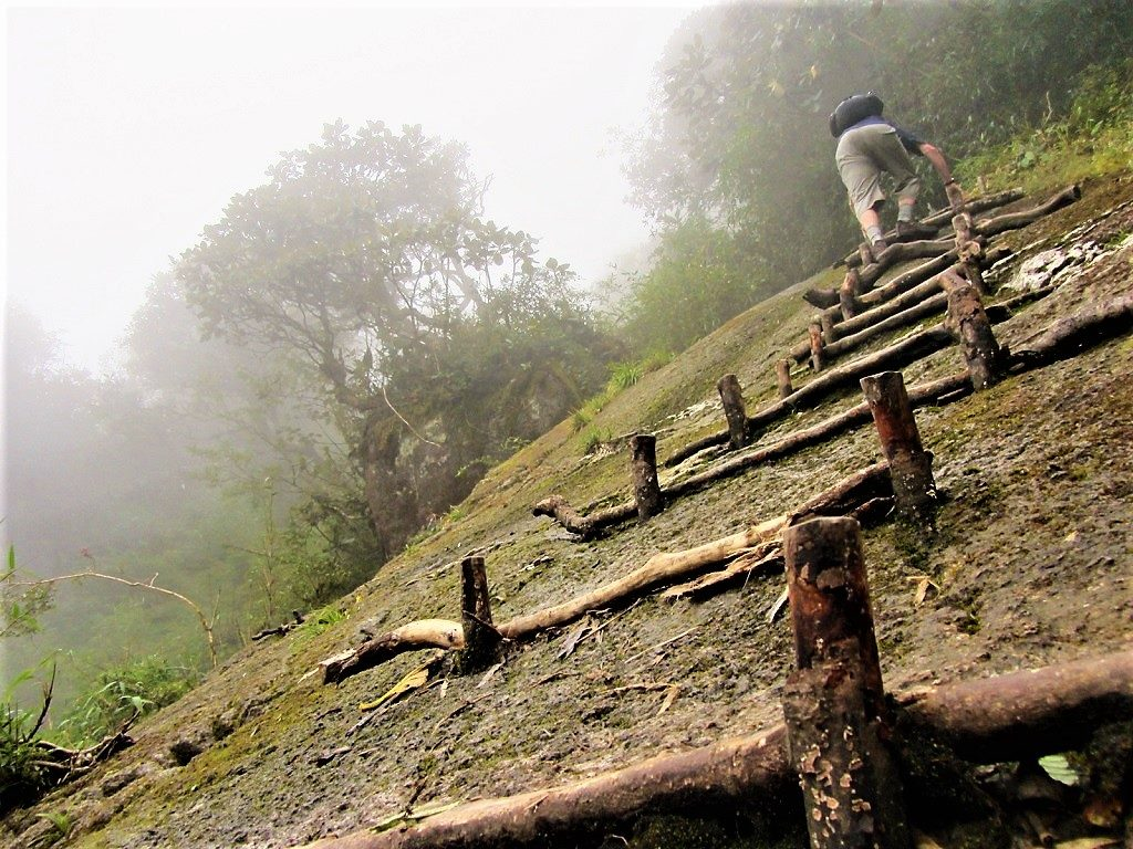 Climb Fansipan mountain independently, without a guide, Vietnam