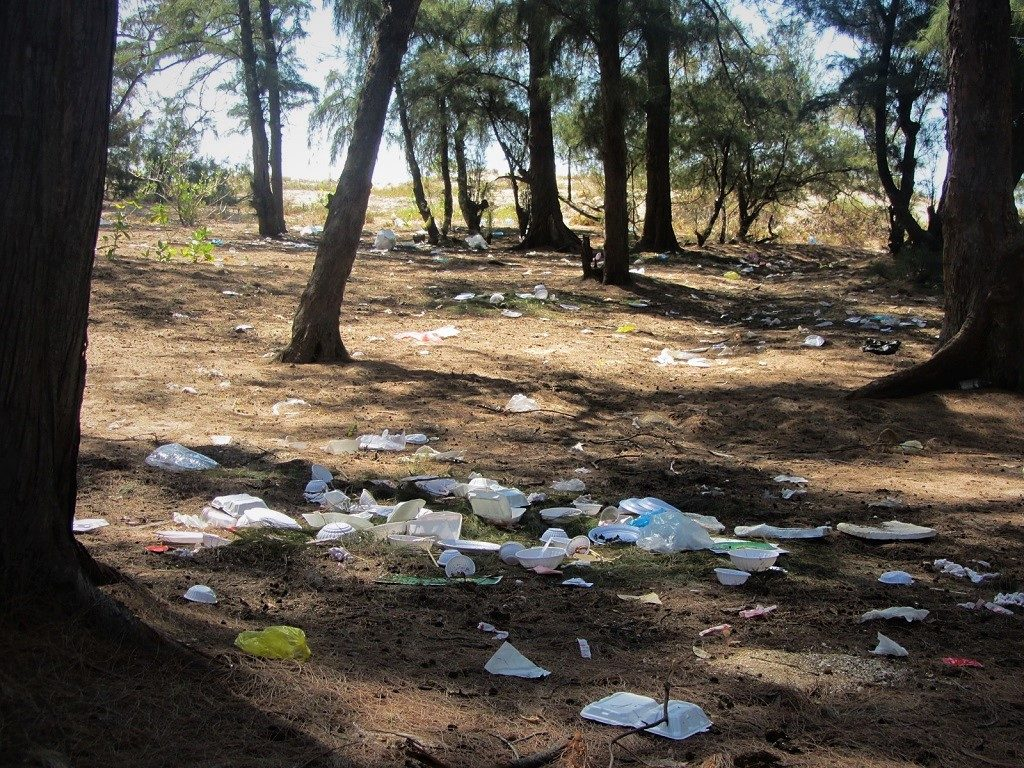 Single-use plastic discard in the forest, Vietnam