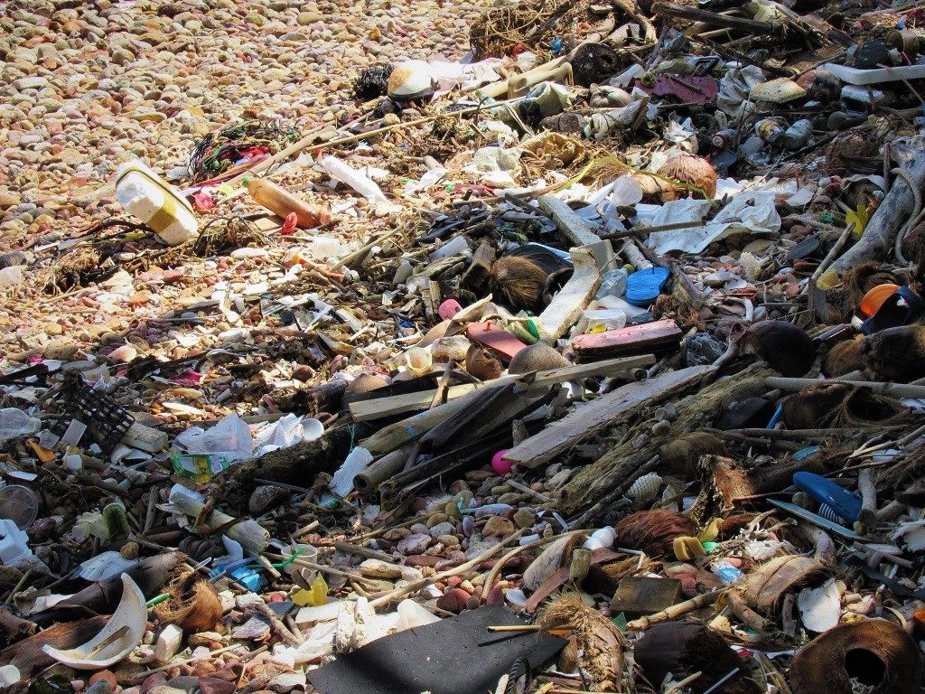 Flotsam & jetsam, much of it plastic, on a beach in Vietnam