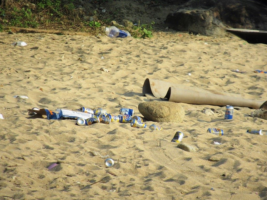 Litter on Son Tra Peninsular, Danang, Vietnam