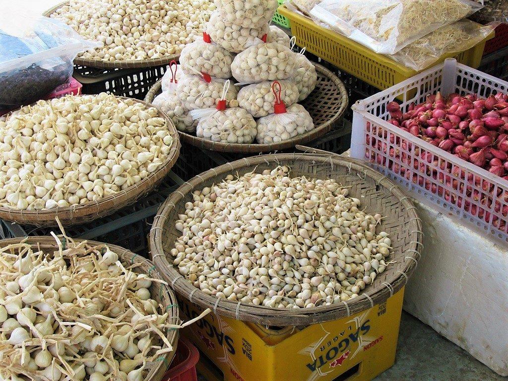 Famous Ly Son garlic & shallots, Quang Ngai, Vietnam