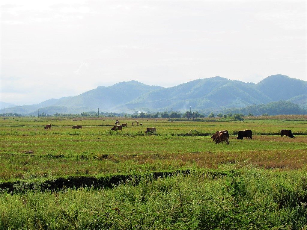 Greenfield Ecostay, Phong Nha, Vietnam