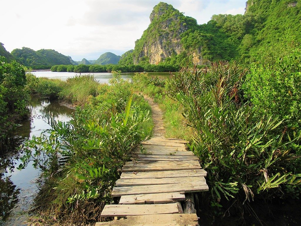 Walking, hiking, wandering & exploring Cat Ba Island, Vietnam