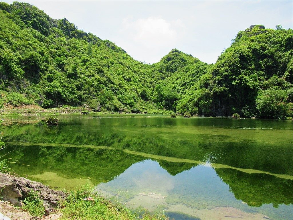 Good budget accommodation clusters around Ha Sen lake, Cat Ba Island, Vietnam