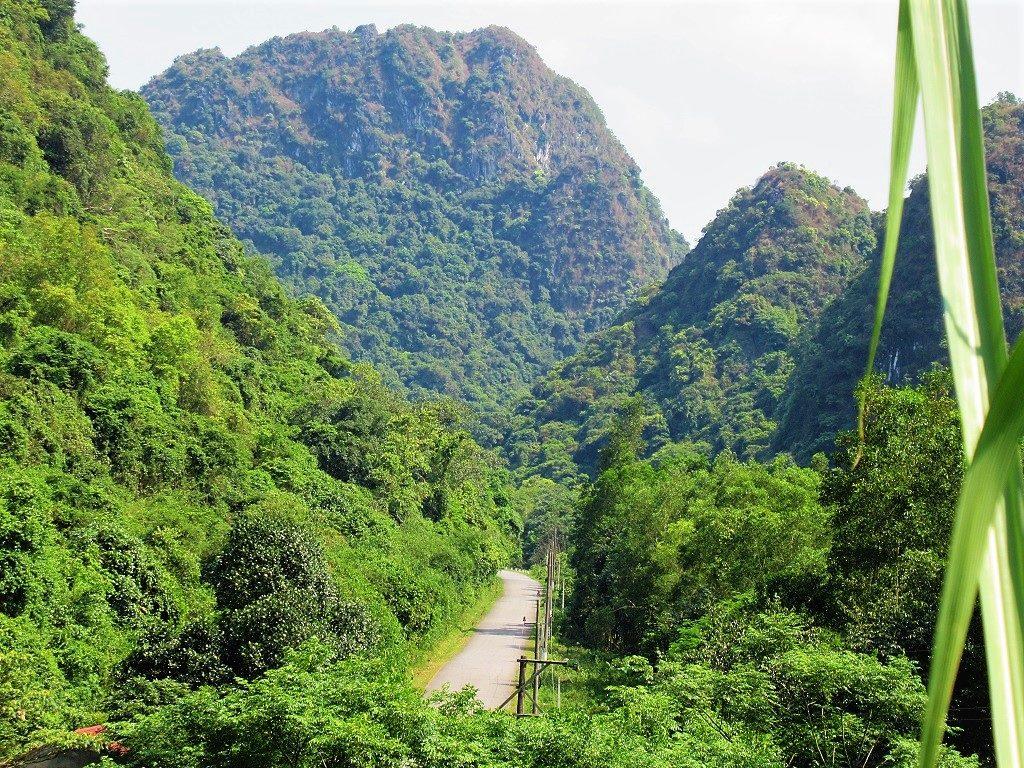 Northern Cat Ba Island is pristine, green & serene