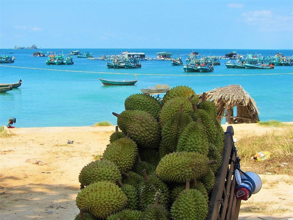 Durians for sale, Ganh Dau Village, Phu Quoc Island