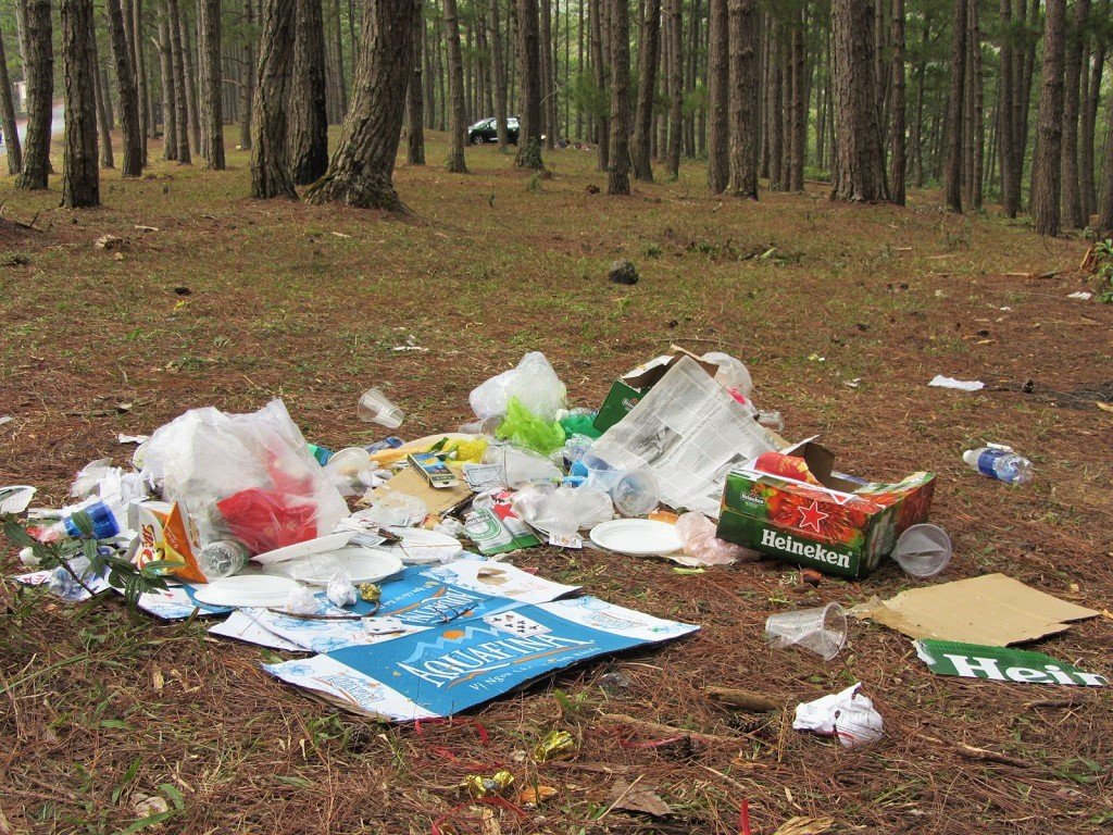 Trash left in the pine forests, Dalat, Vietnam