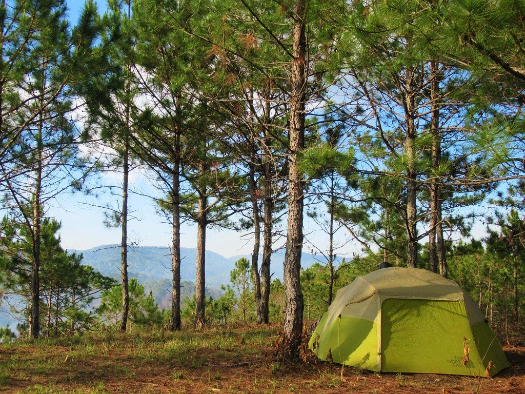 Wild camping in the pine forests north of Dalat, Vietnam