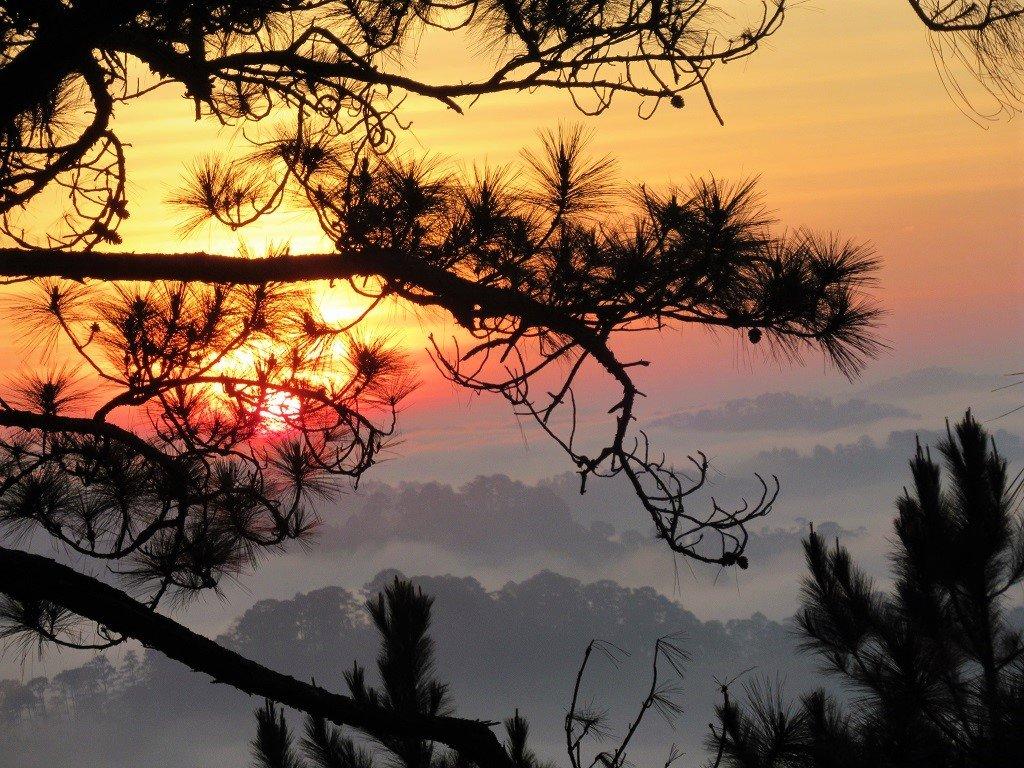 Sunrise from my tent, Dalat, Vietnam