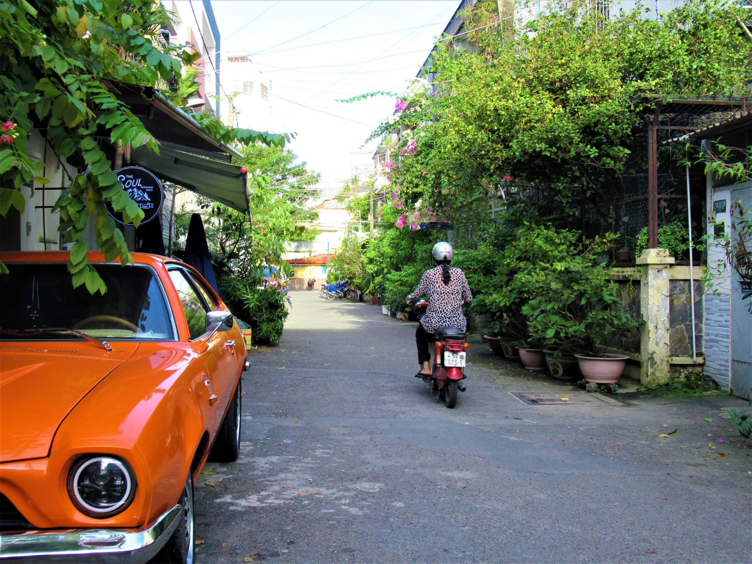 Tan Dinh neighbourhood alleyway, Saigon, Ho Chi Minh City