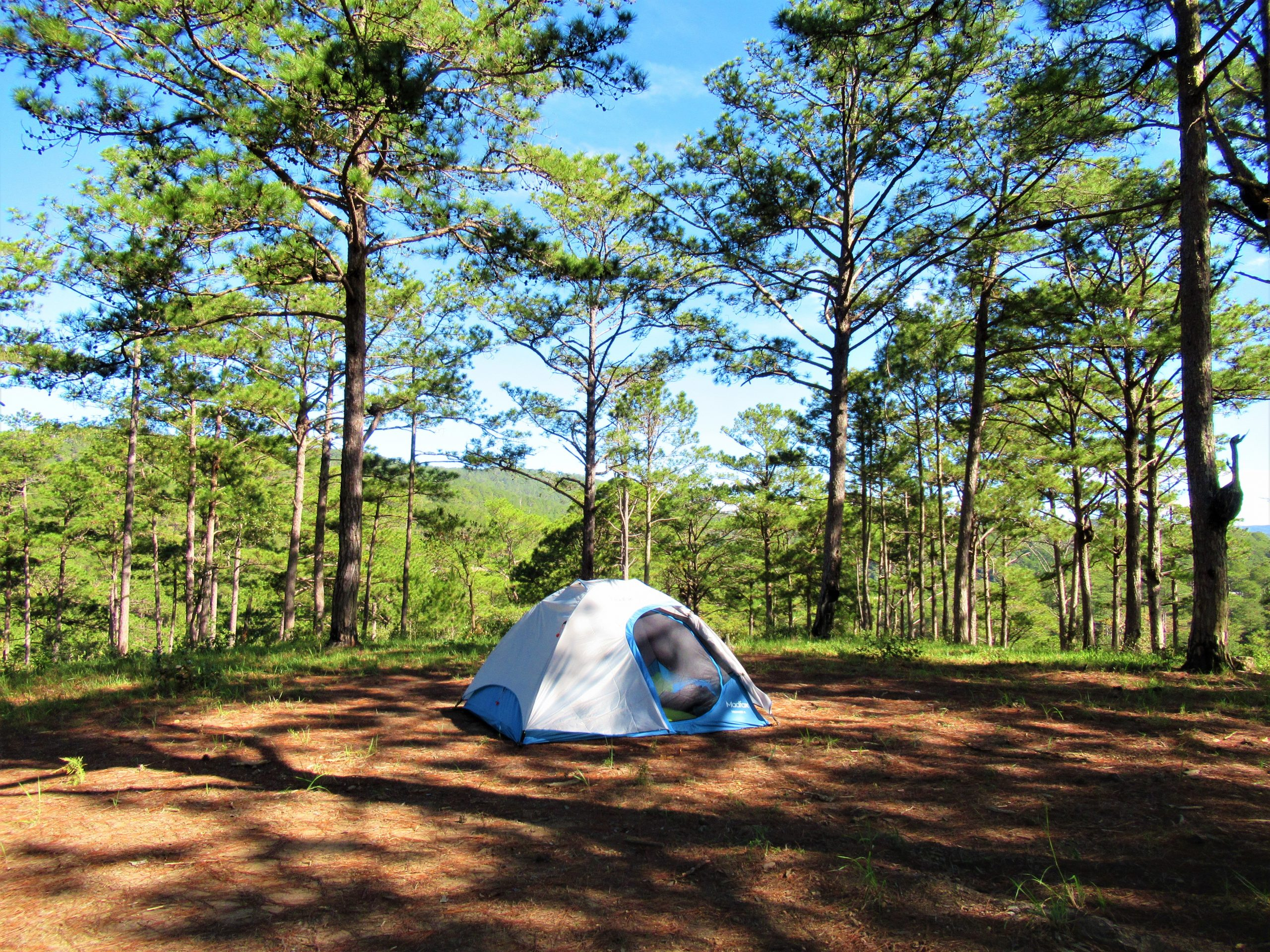 Camping in the pine forests north of Dalat, Vietnam