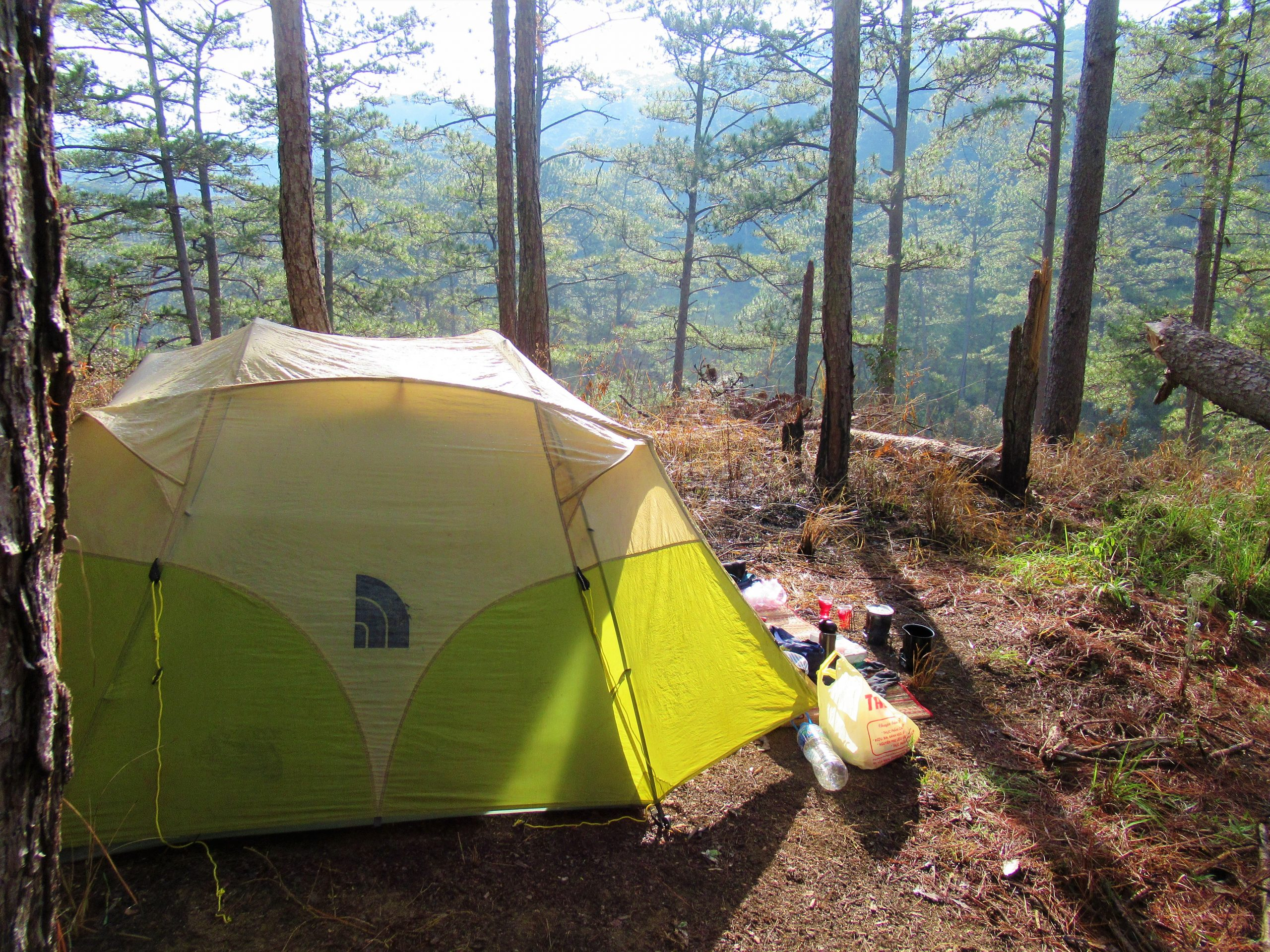 Camping in the pine forests near Da Nhim, Lam Dong Province, Vietnam