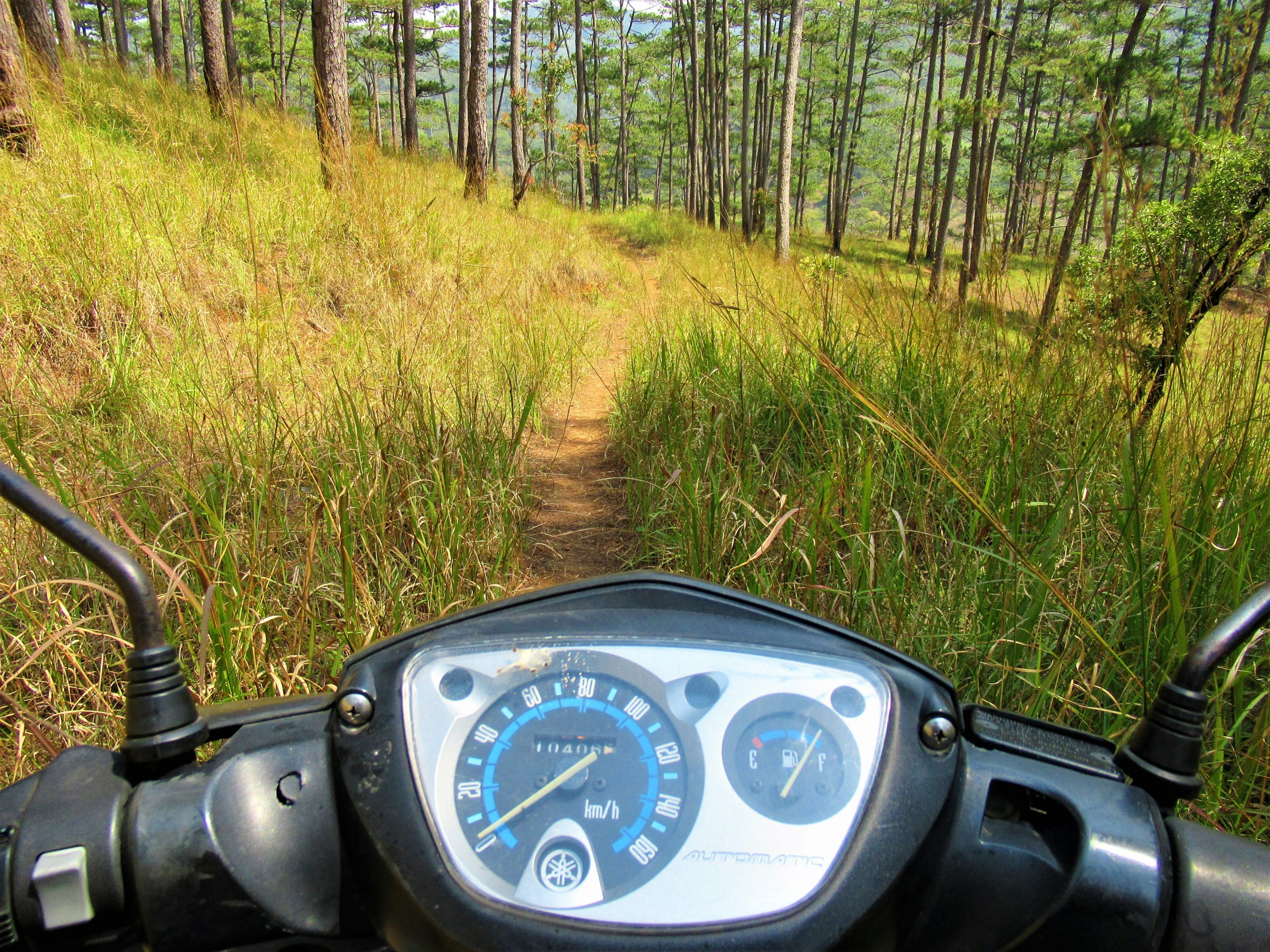 Motocamping in the Da Nhim pine forests, Central Highlands
