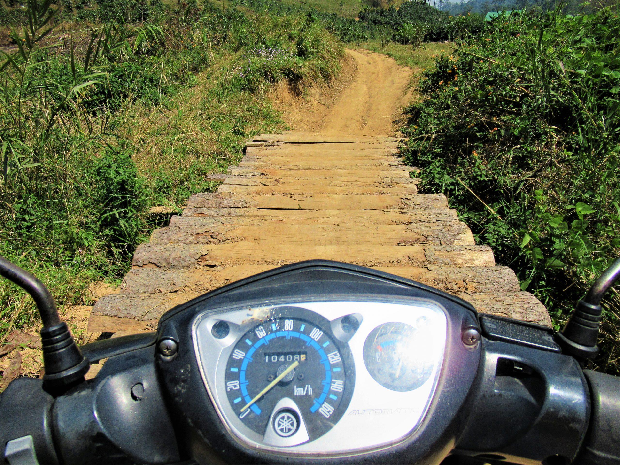 Wooden log bridge over a brook, motocamping in the Da Nhim pine forests, Central Highlands