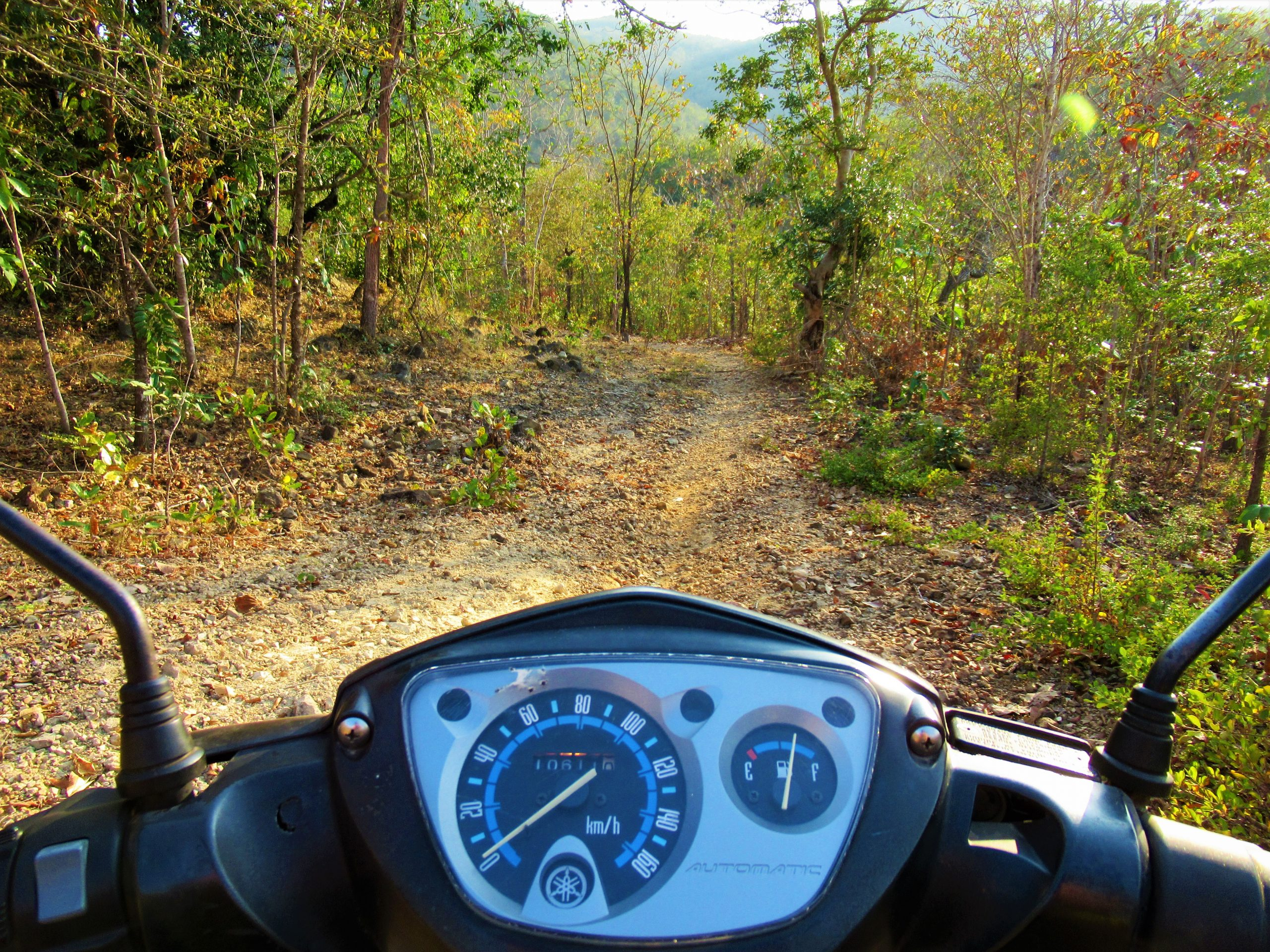 rough road into the trees, motocamping on the Cho Mo River, Central Highlands