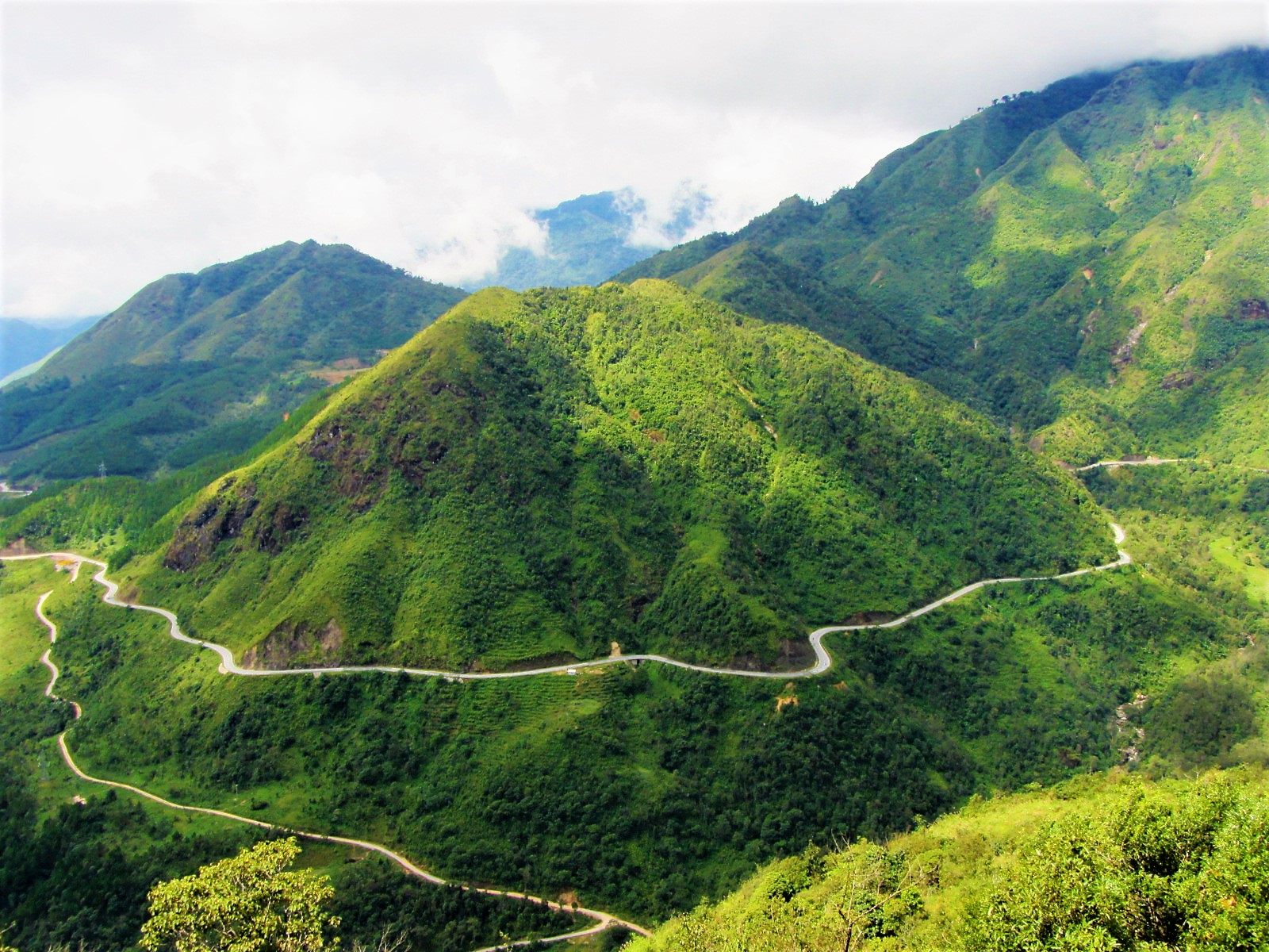 Traversing the northwest mountains, Tram Ton Pass (or O Quy Ho) is the highest in Vietnam